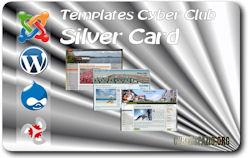 Card-Silver