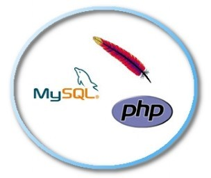 Installare Apache, MySQL e PHP su server Linux/CentOS 6.x (LAMP)