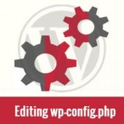 WordPress e la gestione delle Revisioni e del Cestino